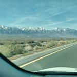 Drive to Fallon